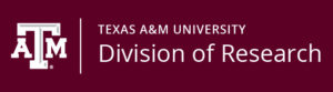Texas A&M University Vice President of Research